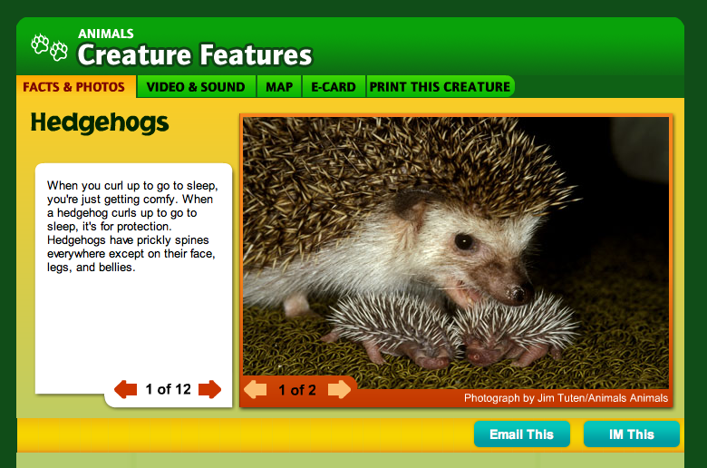 National Geographic Creature Feature Hedgehogs