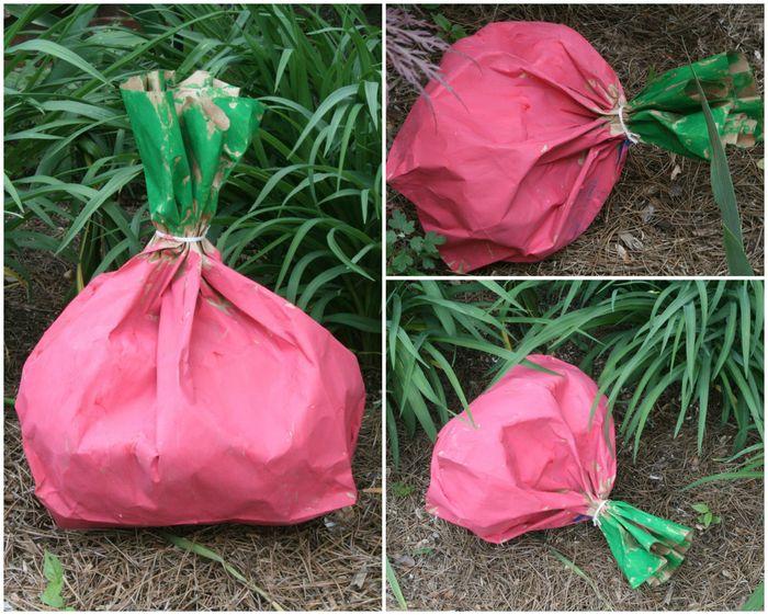 Unusually Large Paper Bag Radish