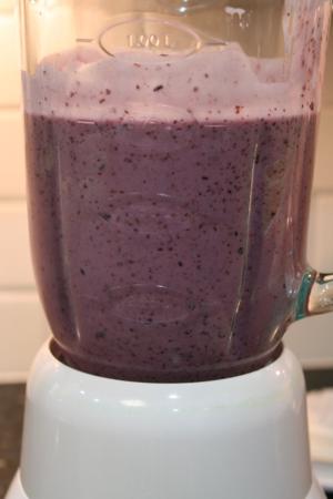 Blueberry Yogurt Pops - BLueberries for Sal - Off the Shelf
