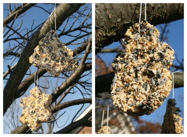 Homemade Birdseed Ornaments - Bear Has a Story to Tell - Off the Shelf